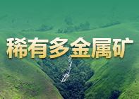 湖南大义山8万吨锡多金属矿勘查开发项目转让(国有项目)